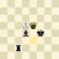 Chess Game 10065757 Checkmate